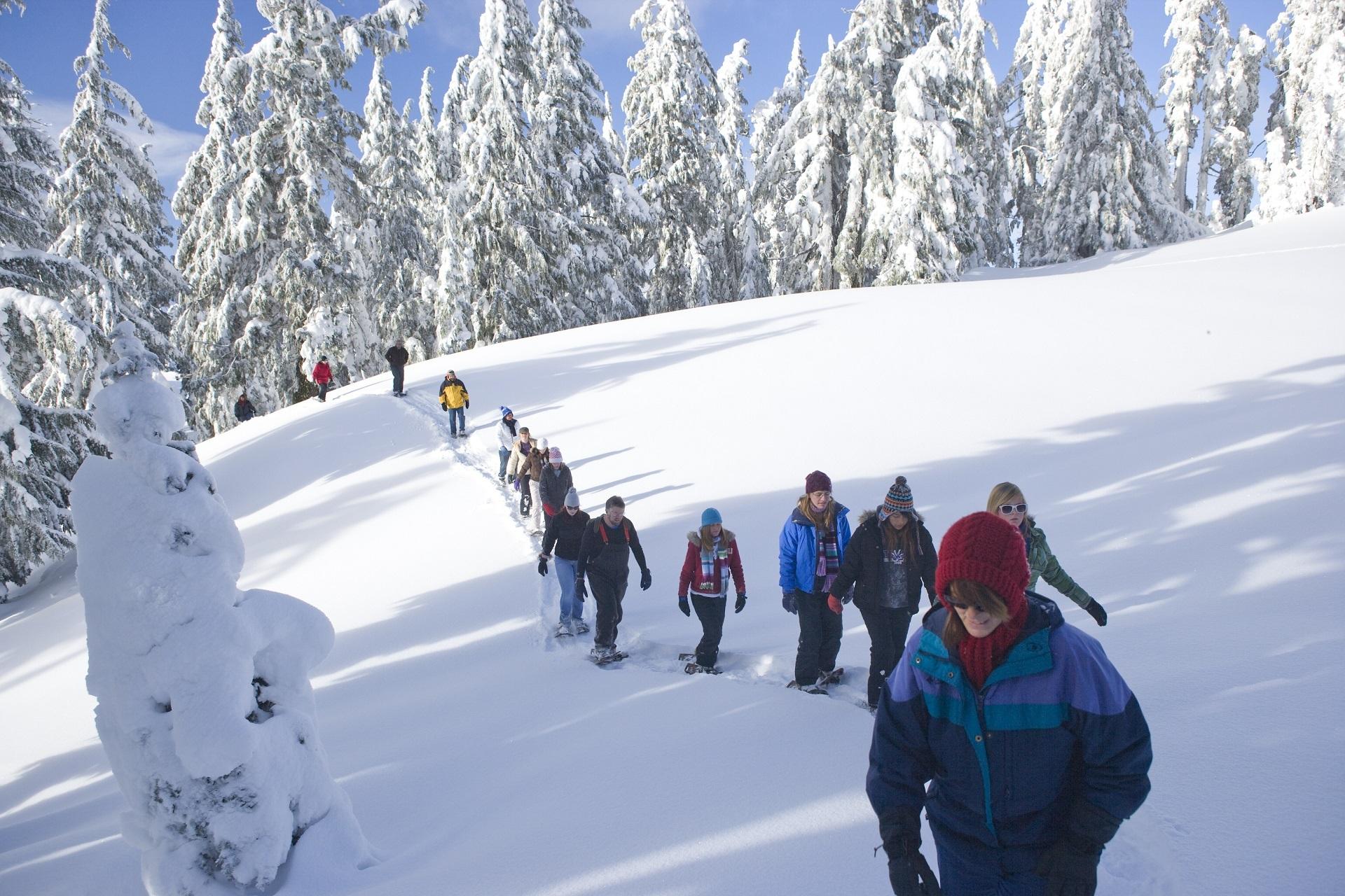 Gruppen Schneesschuhwandern